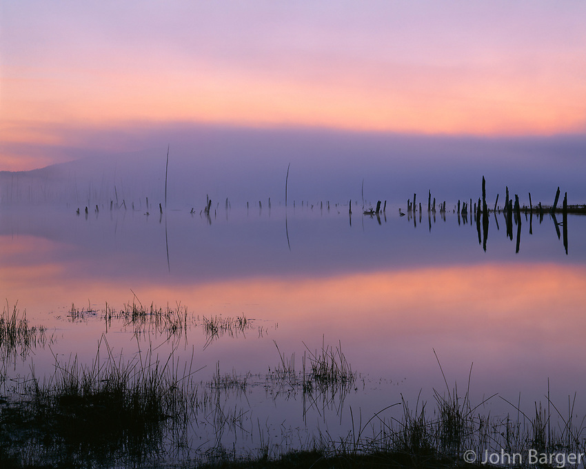 ORCAC_086 - USA, Oregon, Deschutes National Forest, Pastel sky at dawn and fog over Crane Prairie Reservoir.