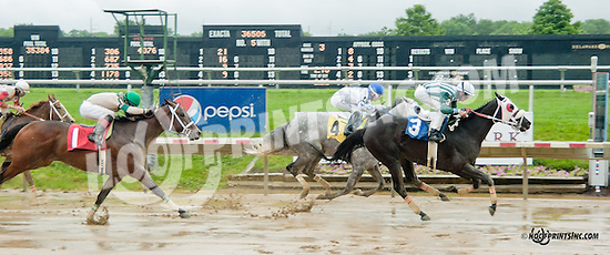 Everybody's Daddy winning at Delaware Park on 7/1/13