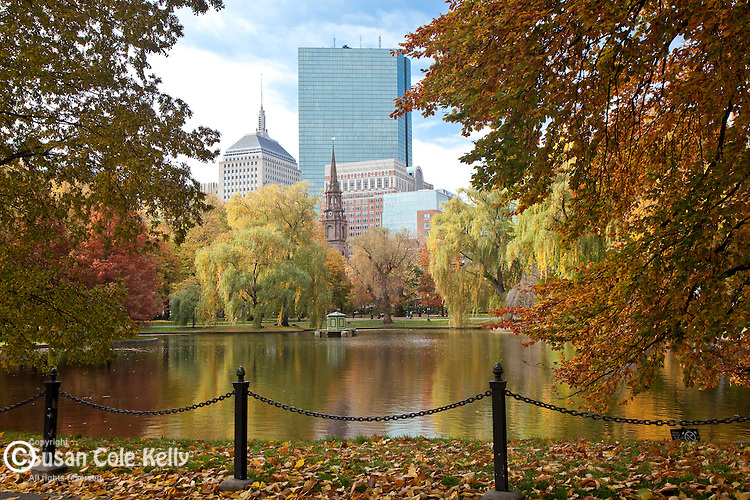 Fall foliage in the Boston Public Garden, Boston, MA