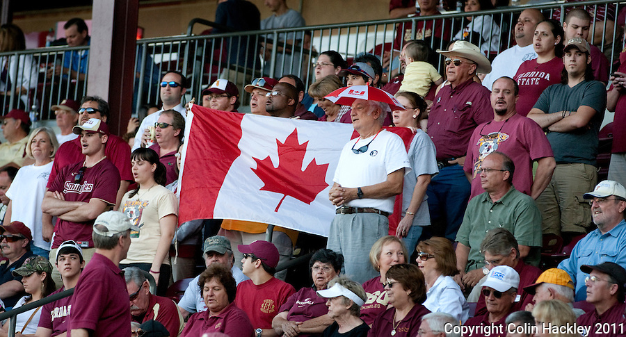 """TALLAHASSEE, FL 4/12/11-FSU-UF BASE11 CH-Florida State animal section fans sing """"O Canada"""" during the game against Florida Tuesday at Dick Howser Stadium in Tallahassee. The Seminoles beat the Gators 3-1. COLIN HACKLEY PHOTO"""