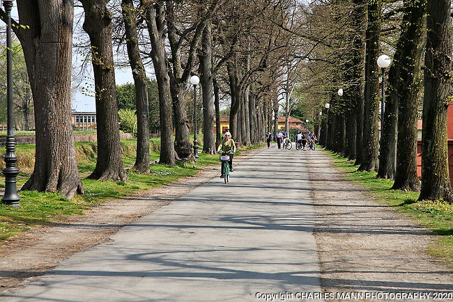Riding bicycles around the city on top of the perimeter wall is one of the most popular activites for both visitors and residents of Lucca.