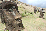 The interior of the Rano Raraku volcano contains many finished and unfinished moai. Erosion has covered many nearly completely and it's possible more lay beneath the ground, covered by hundreds of years of erosion.<br /> Statues located on the interior slopes of Rana Raraku. Centuries of erosion have buried many of the Moai around the rim of the caldera.