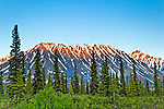 Sunset glow on Kesugi Ridge.  Interior Alaska, Summer.