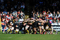 Nic Berry of London Wasps puts the ball into the scrum during the Aviva Premiership match between London Wasps and Gloucester Rugby at Adams Park on Sunday 1st April 2012 (Photo by Rob Munro)