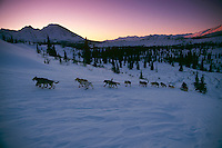 S.Zuray Mushing uphill ckpt Rainy Pass 1996 Iditarod