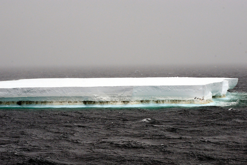 Table top iceberg - Southern Ocean