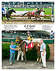 C C Gold winning at Delaware Park on 7/1/13