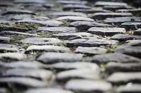 Belgian Cycling Carpet <br /> (up the Oude Kruisberg)<br /> <br /> E3 - Harelbeke 2016
