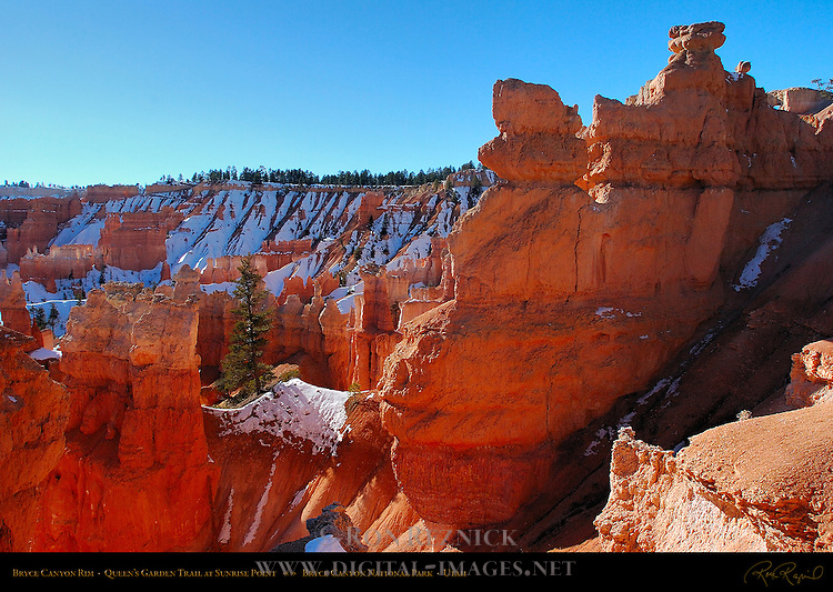 Bryce Canyon Rim in Winter, Queen's Garden Trail at Sunrise Point, Bryce Canyon National Park, Utah