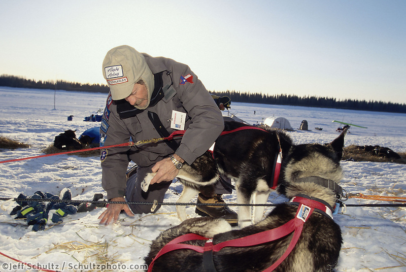 Vet Bill Daly Checks John Baker's Dogs at Eagle Isl 1