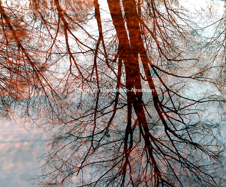 Middlebury, CT- 27, October 2010-102710CM03  Various trees are reflected in a puddle on top of a picnic table at Hop Brook Lake in Middlebury Wednesday afternoon.  The warm weather is expected to continue today (Thursday) with highs in the 70s.  Christopher Massa Republican-American