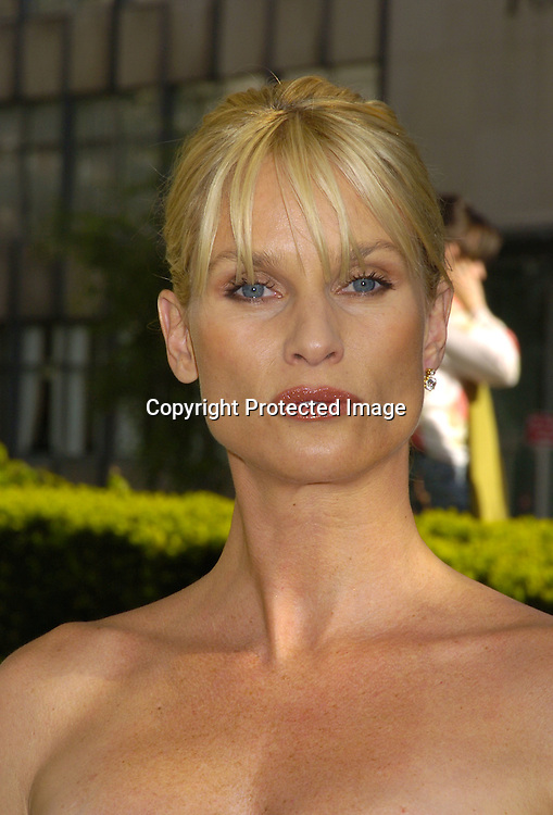 Nicolette Sheridan ..at The ABC Upfront Announcement of Their Fall Schedule on May 17, 2005 at Lincoln Center...Photo by Robin Platzer, Twin Images
