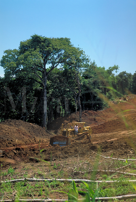 Workers clear rainforest area to build a road near Panama City, Panama. Panama.