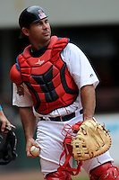 Pawtucket Red Sox catcher Dan Butler #12 during a game versus the Buffalo Bisons at McCoy Stadium in Pawtucket, Rhode Island on June 16, 2013.  (Ken Babbitt/Four Seam Images)