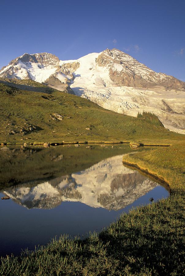 Mount Rainier reflected in alpine lake, Mount Rainier National Park, Washington