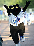 Fort Worth Cats mascot, Dodger, in action during the American Association of Independant Professional Baseball game between the Amarillo Sox and the Fort Worth Cats at the historic LaGrave Baseball Field in Fort Worth, Tx. Fort Worth defeats Amarillo 5 to 3.