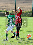 Deegan Malone (Walshestown) and Ben Morris (Termonfeckin) at the Walshestown V Termonfeckin U9 at Walshestown All Weather.<br /> <br /> Photo - Jenny Matthews