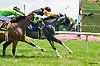 Shan Dian Kia winning at Delaware Park on 7/6/16
