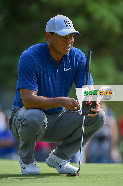 Tiger Woods (USA) lines up his putt on 12 during 1st round of the World Golf Championships - Bridgestone Invitational, at the Firestone Country Club, Akron, Ohio. 8/2/2018.<br /> Picture: Golffile | Ken Murray<br /> <br /> <br /> All photo usage must carry mandatory copyright credit (© Golffile | Ken Murray)