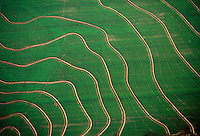 Aerial of South Louisiana rice fields