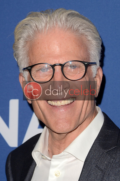 Ted Danson<br /> Oceana and the Walden Woods Project presents: Rock Under The Stars with Don Henley and Friends, Private Residence, Los Angeles, CA 07-17-17<br /> David Edwards/Dailyceleb.com 818-249-4998