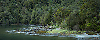 Remote beach with rainforest in Hall Arm of Doubtful Sound, Fiordland National Park, Southland, UNESCO World Heritage Area, New Zealand, NZ