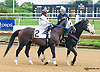 Jake N Elwood before The New Castle Stakes at Delaware Park on 9/12/15