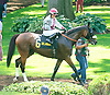 St. Alban's Boy before The Cape Henlopen Stakes at Delaware Park on 7/11/15