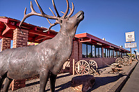 The Roadkill Caf&eacute;<br /> &quot;This Place Really Exists&quot;<br /> <br /> A must see for any traveler headed through Northern Arizona! The Roadkill Caf&eacute; is home to the best steaks and burgers in town, all charbroiled to perfection. The restaurant, with its wonderful &ldquo;Old West&rdquo; atmosphere, features a local wildlife museum collection,  full service bar, and a gift shop with fun &quot;Roadkill&quot; souvenirs and Route 66 memorabilia.