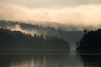 """Misty Forest""<br />
