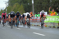 Campbell Stewart (New Zealand National Team - 1st), Jensen Plowright (Australia/Team BridgeLane - 3rd), Nick Kergozou (New Zealand/Coupland's Bakeries Team -2nd) cross the line together at the end of stage two of the NZ Cycle Classic UCI Oceania Tour (Gladstone circuit) in Wairarapa, New Zealand on Thursday, 16 January 2020. Photo: Dave Lintott / lintottphoto.co.nz