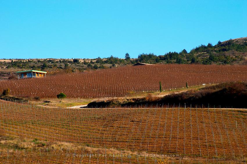 Domaine Jean Louis Denois. Limoux. Languedoc. France. Europe. Vineyard.
