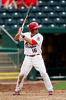 Nick Derba (16) of the Springfield Cardinals at bat during a game against the Tulsa Drillers at Hammons Field on June 27, 2011 in Springfield, Missouri. (David Welker / Four Seam Images)