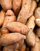 October 12, 2009. Durham, North Carolina..Locavore for 10.14.Local sweet potatoes