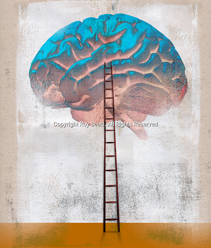 Ladder leading to large brain