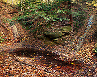 Two small ravines through the Mansfield Sandstone merge into a pool.  The area, hidden by Hemlock Trees and the rest of the forest canopy, creates fun natural slide for those lucky kids who find this hidden spot at Turkey Run State Park.
