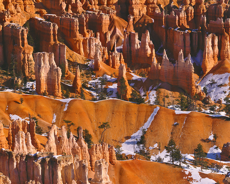 Morning light on the Queen's Garden viewed from Sunset Point; Bryce Canyon National Park, UT