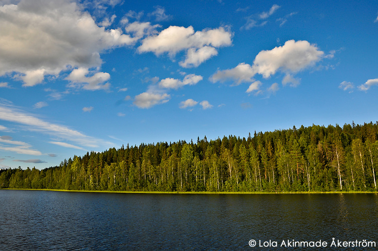 Landscapes from Northern Sweden