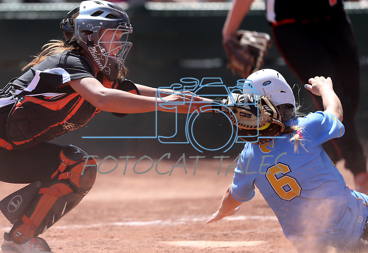 Douglas' catcher Kelly Sonneman makes the tag on a Reed player during the regional championship game in Reno, Nev., on Saturday, May 11, 2013. The runner was ruled safe on the play and Reed won the regional championship..Photo by Cathleen Allison