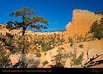 Fairyland Canyon Landscape, Bryce Canyon National Park, Utah