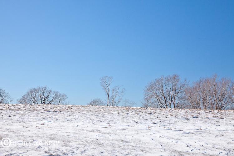 Coastal snow at Laudholm Farm  in Wells, ME, USA