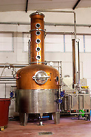 A distillation machine still in stainless steel and copper with narrow column. Hercegovina Produkt winery, Citluk, near Mostar. Federation Bosne i Hercegovine. Bosnia Herzegovina, Europe.