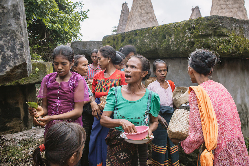 The villagers during a ritual for the ancestors around old megalith tombs in the village of Wainyapu, Kodi, before the Pasola begun. For many of the the Sumbanese, who still believe in the ancient animism called Marapu, the day around Pasola is considered holy. And many of them came from faraway village in Sumba to watch Pasola. Pasola is an ancient tradition from the Indonesian island of Sumba. Categorized as both extreme traditional sport and ritual, Pasola is an annual mock horse warfare performed in response to the harvesting season. In the battelfield, the Pasola warriors use blunt spears as their weapon. However, fatal accident still do occurs.