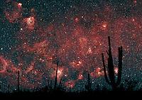 Milkyway Silhouette