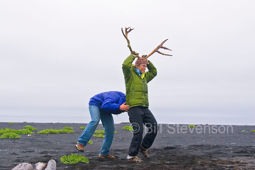 Just like a real caribou.