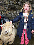 Leah Sheridan pictured at the Nativity Farm at The Old Abbey Lane. Photo:Colin Bell/pressphotos.ie