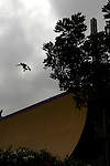 A skateboarder competes in the Skateboard Big Air finals during X-Games 12 in Los Angeles, California on August 6, 2006.