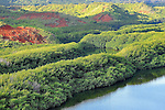 Canyons of green and red, Hawaii