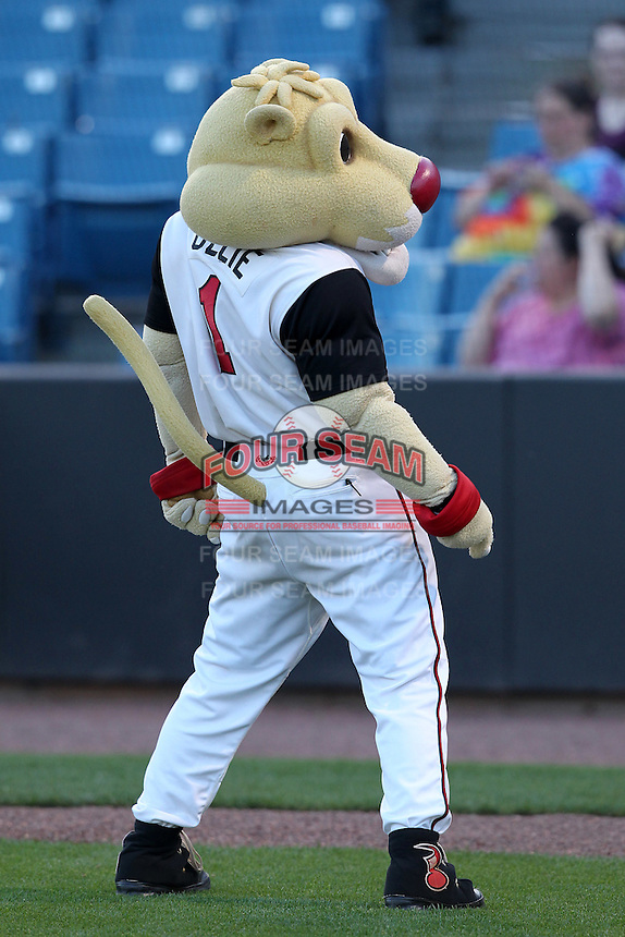 Nashville Sounds mascot Ozzie before a game against the Omaha Storm Chasers at Greer Stadium on April 25, 2011 in Nashville, Tennessee.  Omaha defeated Nashville 2-1.  Photo By Mike Janes/Four Seam Images