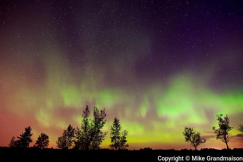 Northern lights (Aurora borealis)<br />Birds Hill Provincial Park<br />Manitoba<br />Canada